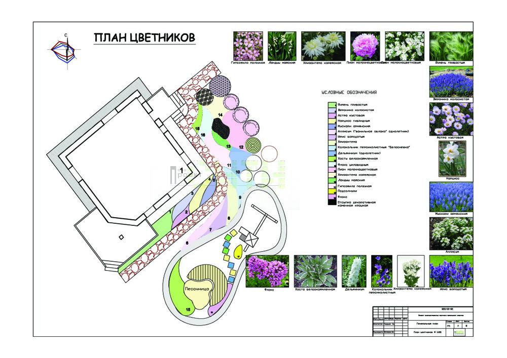 Планировка цветника